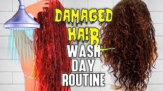 My Wash Day Routine for Damaged Hair | AlexandrasGirlyTalk