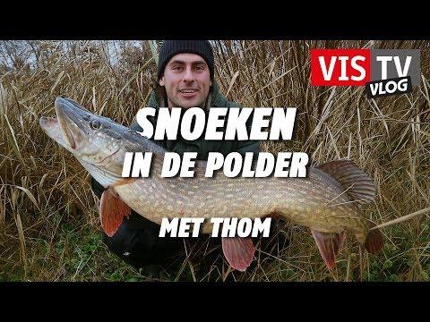 Snoeken in de polder met Thom - VIS TV Vlog #10