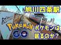 【ポケモンはいるのか?】旭川四条駅を現地調査【Pokemon GO】