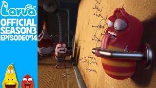 official insect killer 2 - larva season 3 episode 74