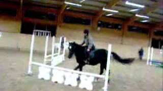 Конкур. падения, и нежелание лошадей прыгать(ролик).flv