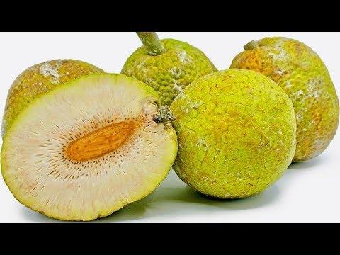 5 Amazing Health Benefits of Breadfruit