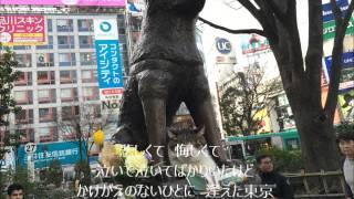 56歳のおっさんが自宅で昭和の名曲歌ってみました!
