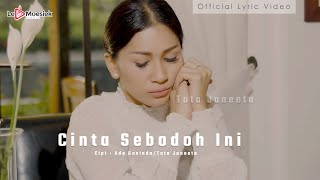Download Mp3 Tata Janeeta - Cinta Sebodoh Ini Ost. Samudra Cinta   Lyric Video