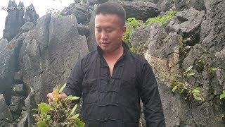 THánh Ch.é.m và nhánh phong lan 1 tỷ. Nguyễn Tất Thắng