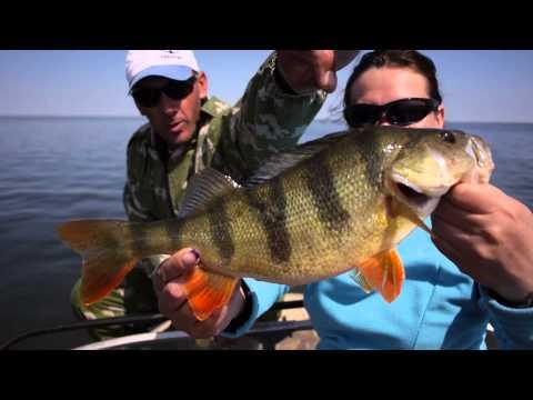 поездки на рыбалку рыбалка видео
