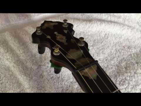 eBay listing  - J.E. Dallas - Banjo