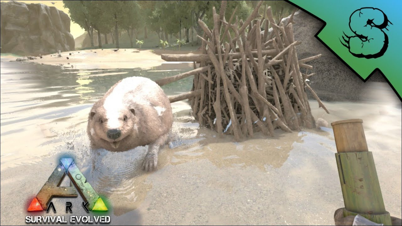 Beaver dams locations tips for looting ark survival evolved beaver dams locations tips for looting ark survival evolved e2 youtube malvernweather Choice Image