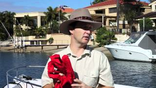 Birds Off Boats - Flags in a Sock Explained(, 2012-05-23T14:36:38.000Z)