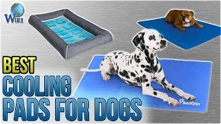 10 Best Cooling Pads For Dogs 2018