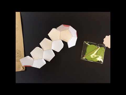Do it Yourself Paper - Succulent Plant