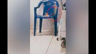 Ratas robando el alimento de pacientes: a tal grado de deterioro llega hospital de Quibdó