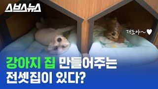강아지 고양이를 위한 전셋집, 신혼부부를 위한 아파트?…