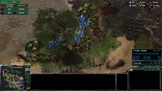 StarCraft II Momento doloroso