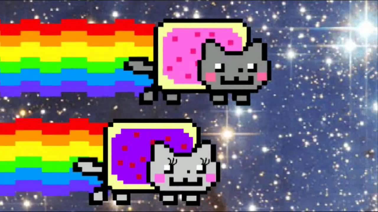 nyan cat falls in love