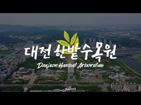 대전 한밭수목원 항공촬영 스케치 / Team꾸러기