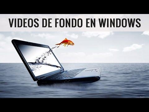 Como poner un fondo de pantalla en movimiento en Windows 7/8/10