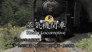 2012年 SL総集編 by TN5DMK2 on YouTube