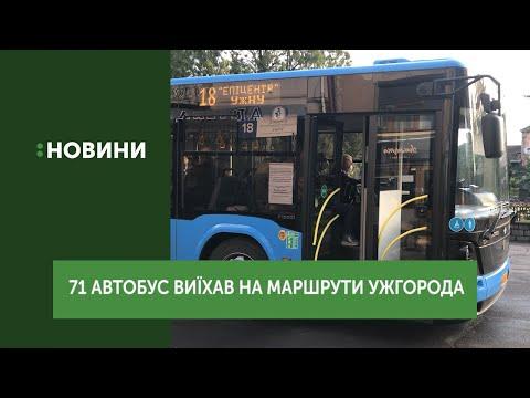 71 автобус виїхав на маршрути Ужгорода