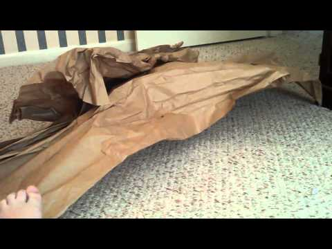 Cookie S Butcher Paper Fort Youtube