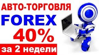 Новый способ заработка 200 рублей в час БЕЗ вложений. Робот RKT8 обзор