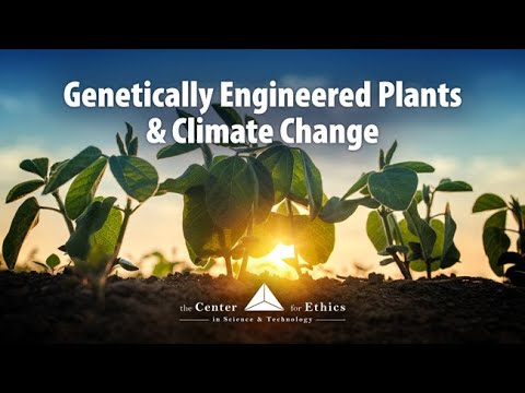 Genetically Engineered Plants and Climate Change - Exploring Ethics