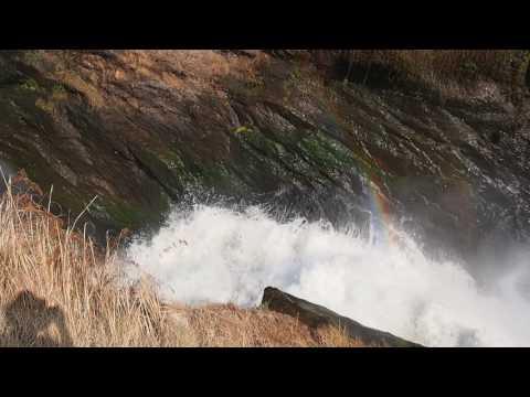 P1281629   Murchison Falls