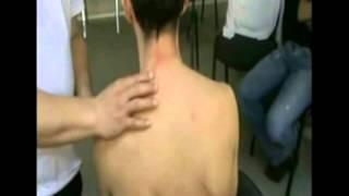 Ударно-динамический массаж Максимова Г.