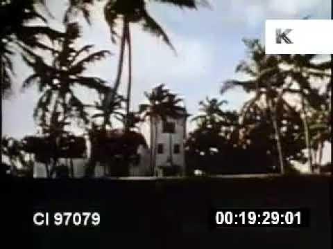 1970s Drive Through Palm Beach, Florida, Mansions