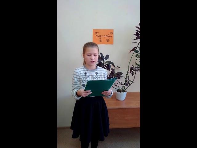 Изображение предпросмотра прочтения – АнастасияКулябина читает произведение «Как вылететь шмелю» В.А.Сухомлинского