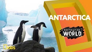 Antarctica | Destination World