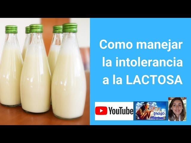Intolerancia a la Lactosa como manejarla