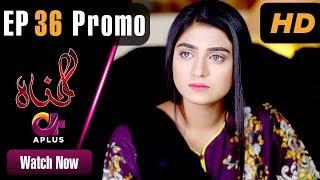 Gunnah - Episode 36 Promo | Aplus Dramas | Sara Elahi, Shamoon Abbasi, Asad Malik | Pakistani Drama