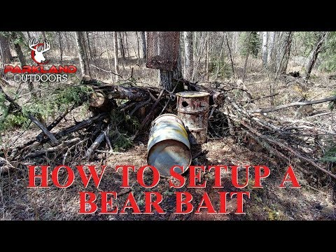 How To Setup A Bear Bait In Alberta | Spring Bear Hunting Tips