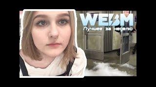 КСЯША СМОТРИТ: Dank WebM Compilation #54