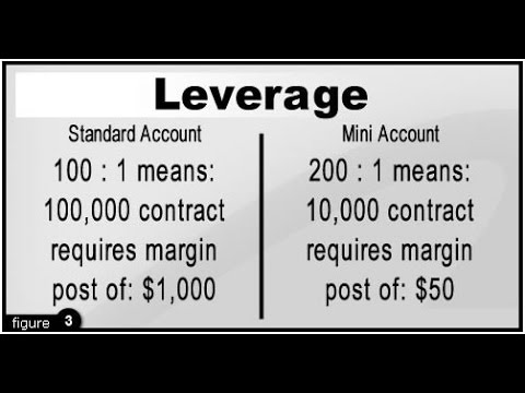 Millionairez Wealth Club - Step 13 - Financial Leverage [Trading on Equity]