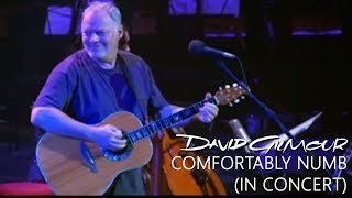 David Gilmour - Comfortably Numb (In Concert)