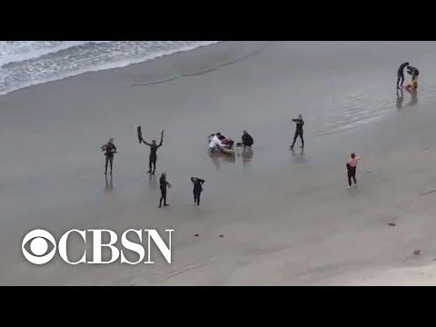 13-year-old Brutally Attacked By Shark In Southern California