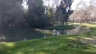 Video grabado con el Öwn One Plus   8Gigas Video