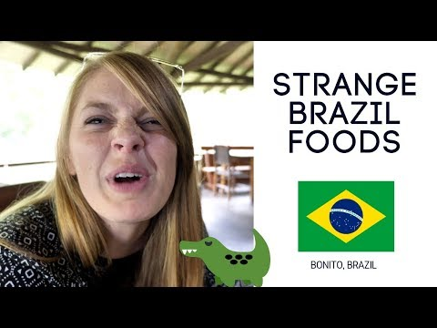 Taste like chicken?! 🐊Brazil Food and Bonito Ecotourism
