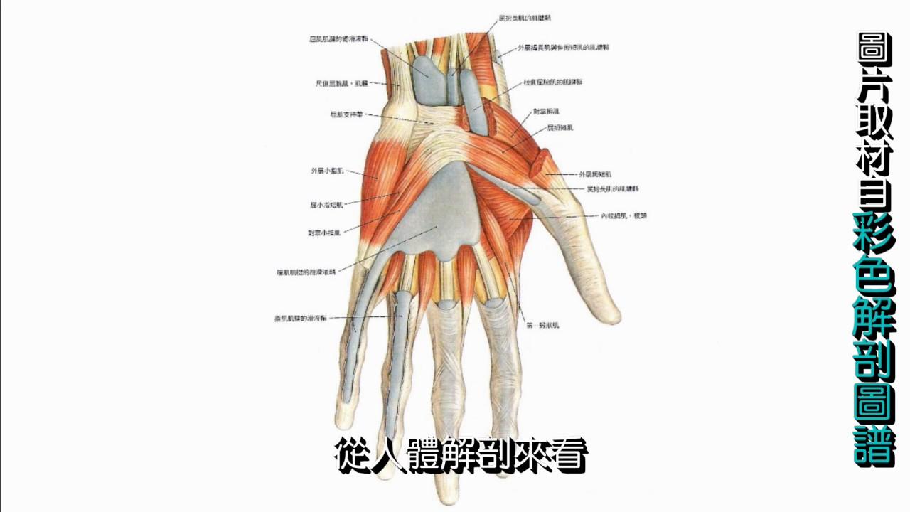 手腕挫傷- YouTube