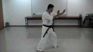 Sabaki Form of Yellow Belt