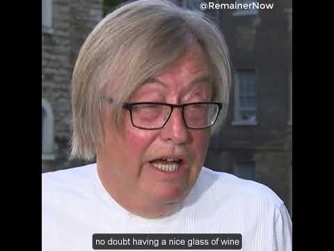 David Mellor voted leave, what...