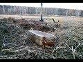 Отец с сыном не поверили своим глазам, когда нашли клад в поле!