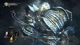 [黑暗靈魂3][Dark Souls 3] 冷冽谷的 波爾多 (最短路徑打王)