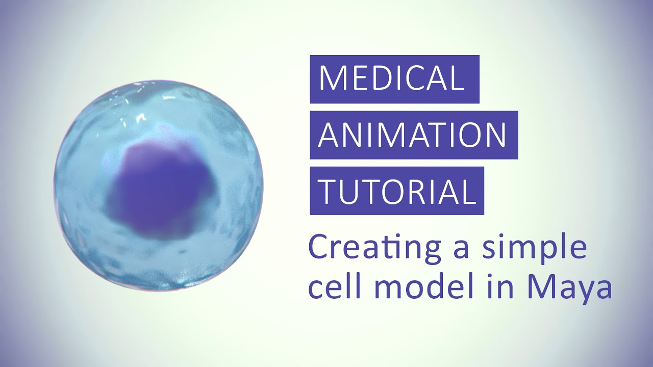 medical animation tutorial creating a simple cell model in maya by annie campbell [ 1280 x 720 Pixel ]