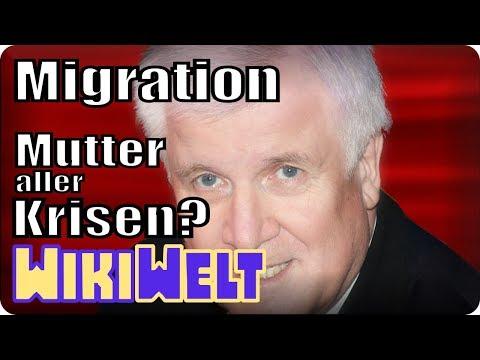 Ist Migration die Mutter aller Probleme? - mein WikiKommentar #80