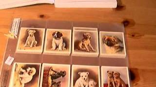 Puppies On Old 1930's Trading Cards - Dog Breeds