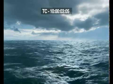 Vidéo Narration Documentaire - Les Baleines - France TV