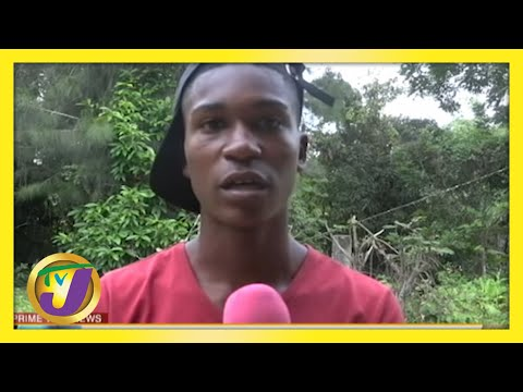 Jamaican Teen Turns to Construction to Help with Schooling | TVJ News